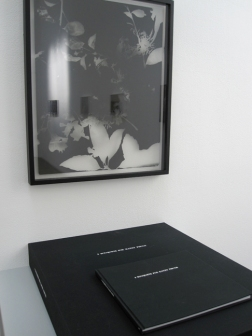 """Greg Wilken, """"9 Bouquets for Kathy Fiscus,"""" 2010, (detail), Framed litho film radiograph, book, case, and table, 23 x 18 inches (58.4 x 45.7 cm), Series of 9"""