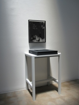 """Installation view of Greg Wilken, """"9 Bouquets for Kathy Fiscus,"""" 2010, Framed litho film radiograph, book, case, and table, 23 x 18 inches (58.4 x 45.7 cm), Series of 9"""