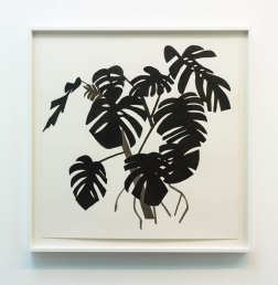 Jonas Wood Untitled (Large Black Leaves), 2013 Ink on paper 40 x 40 inches (101.6 x 101.6 cm) Framed: 45 x 45 inches (114.3 x 114.3 cm)